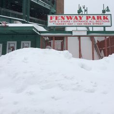Fenway Park -- all snowed in.