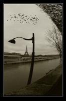 photo : Просто о Париже | photographer : Yuri Bonder Personal Photo, Yuri