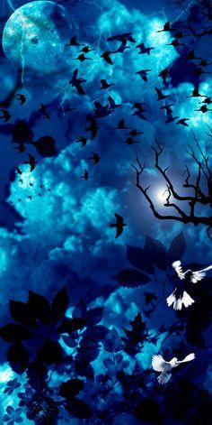 Blue birds flying.  For similar pins please follow me at - https://www.pinterest.com/annelouise1959/colour-me-blue/