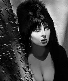 Spooky Beauty Secrets From Elvira, the Original Mistress of the Dark Cassandra Peterson, Manado, Elvira Makeup, Elvira Movies, Cinema Secrets, Old Makeup, Crazy Makeup, Makeup Art, Dark Pictures