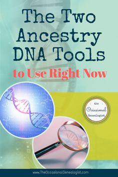 Just 2 powerful AND easy steps can get you results using your AncestryDNA results. Don't fight with complicated tools until you've tried this! #geneticgenealogy #genealogy #TheOccasionalGenealogist Match List, Dna Results, Ancestry Dna, Genealogy Research, Dna Test, Genetics, Family History, Improve Yourself, Told You So