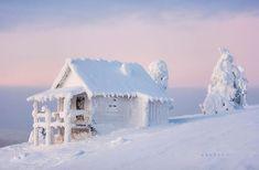 Amazing World. Snow covered winter wonderland in Finland. Winter Szenen, Winter Magic, Winter Time, Hello Winter, Winter Christmas, Lapland Finland, Snow Scenes, Winter Pictures, Jolie Photo
