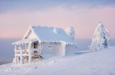 20+ Lonely Little Houses Lost In Majestic Winter Scenery | Bored Panda