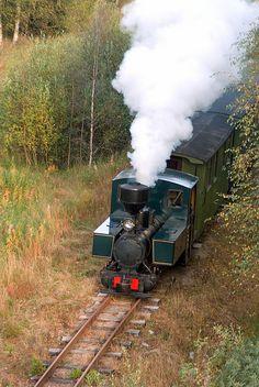 Nykarleby Jernväg (Finland) gauge Lokomo-built No. Garden Railroad, Old Trains, Steam Engine, Steam Locomotive, Train Tracks, Beautiful Buildings, Gauges, Finland, Boats