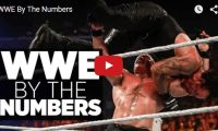 WWE By The Numbers Ok wrestling fans, who's the oldest wrestler…. and the youngest? How much do wrestlers make? Watch the video as Forbes takes a look at some of the stats behind the world's largest pro wrestling organization...