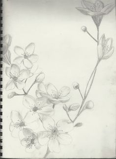 simple black and white cherry blossom tattoo sketch - Google Search