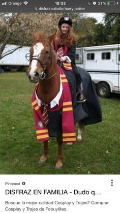 Yer a wizard, Horsey! Because pets need to cos too, Harry Potter horse cosplay Funny Horses, Cute Horses, Horse Love, Beautiful Horses, Horse Halloween Costumes, Costumes For Horses, Harry Potter Cosplay, Equestrian Outfits, Horse Girl