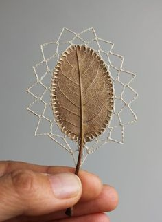 I wouldn't think it possible to embroider something as delicate as a leaf, but Susanna Bauer, an artist in the UK, can do it. She carefully wraps and edges leaves and, even more impressively, splices and shapes them with thread.