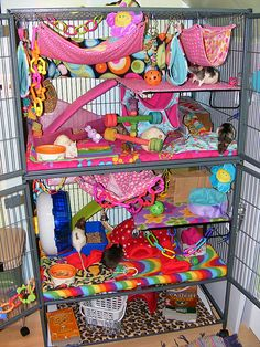 I would love to have a rat cage like this Novoline Pet Rat Cages, Ferret Cage, Rat Cage Accessories, Rat Care, Rat House, Dumbo Rat, Fancy Rat, Small Animal Cage, Cute Rats