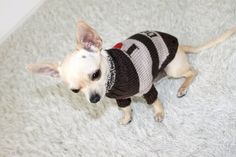 """I love dogs"" Wool Sweater. Pris: 299,-"
