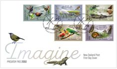 The First Day Cover for NZ Post, Illustrator Stephen Fuller and Designer Di Fuller. First Day Covers, Predator, Postage Stamps, Illustrator, Coins, Bird, Free, Design, Coining