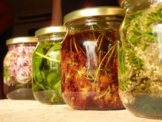 Bra Hacks, Black Garden, Kitchen Witch, Natural Cures, Home Remedies, Feel Better, Herbalism, Mason Jars, The Cure