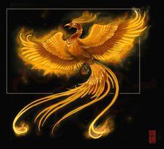 phonix art | anime animal phoenix