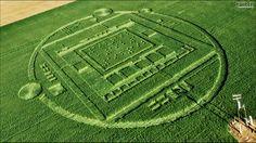 Nvidia | mobile processor marketing via crop circle.