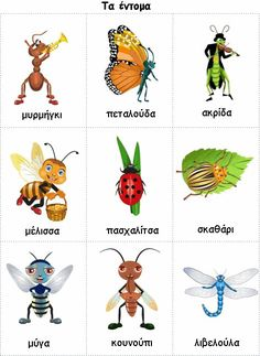 Kids Pages - Insects. great for Japanese vocab English Tips, English Study, English Words, English Lessons, Learn English, Learning English For Kids, Learning Italian, Teaching English, Grammar And Vocabulary
