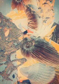 METAMORPHOSEN III by atelier olschinsky , via Behance