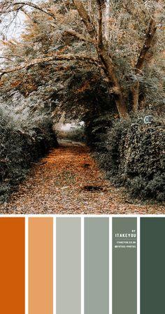 Wedding Colour Theme -Wedding Color combo Sage Color Palette, Green Pallete, Rustic Color Palettes, Bedroom Colour Palette, Orange Color Palettes, Colour Pallete, Orange Color Combinations, Colour Combo, Rust Color Schemes