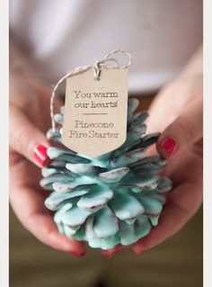 DIY Pinecone Fire Starter Wedding Favors - Mon Cheri Bridals