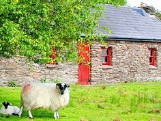 Romantic Ancestral Irish Farm Cottages. Stunning views over lake, mountain & sea