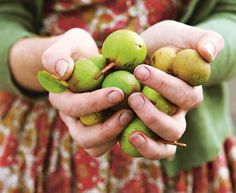 A Beginners Guide to Foraging · Alys Fowler via http://good.net.nz/magazine/good-issue-21/features/beginners-guide-foraging
