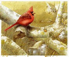 Marjolein Bastin - one of my favorite contemporary artists.  Such wonderful detail!