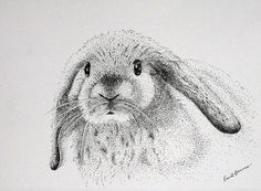 Amazing Pen and Ink Cross Hatching Masters Edition Ideas. Incredible Pen and Ink Cross Hatching Masters Edition Ideas. Dotted Drawings, Ink Pen Drawings, Doodle Drawings, Animal Drawings, Pencil Sketch Drawing, Drawing Tips, Stippling Art, Artist Art, Art Techniques