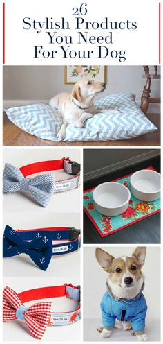 26 Stylish Products You Need For Your Dog  Ok the bow ties are adorable though...