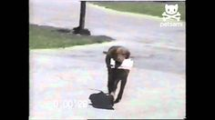 """Dog retrieves mail from mailman"" (45 sec) This dog takes pride in his daily job :)"
