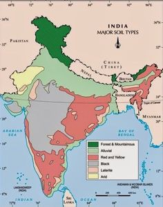 ICSE Solutions for Class 10 Geography - Soils in India - A Plus Topper