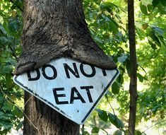 Trees can't read   funny pictures