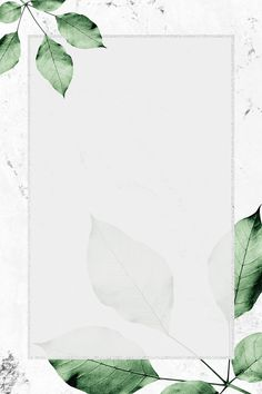 Rectangle silver frame with foliage on marble texture background illustration Flower Background Wallpaper, Framed Wallpaper, Flower Backgrounds, Textured Wallpaper, Textured Background, Wallpaper Backgrounds, Iphone Wallpaper, Art And Illustration, Free Illustrations