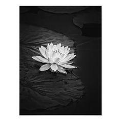 Design Tattoos, Flower Tattoo Designs, Red Lotus Tattoo, Black And White Flower Tattoo, Lily Pad, Ancient Egyptian Art, Grey Flowers, Black Tattoos, Lotus Flower