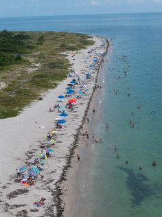 1000 Images About Life 39 S A Beach On Pinterest Beach Photos Florida Be