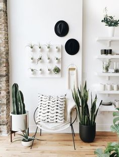 trend alert: check out those fun cacti