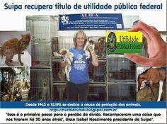 Mural Animal: Suipa recupera título de utilidade pública federal...