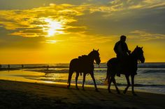 Horseback At Sunset  - Mancora beach Piura. Chris Taylor