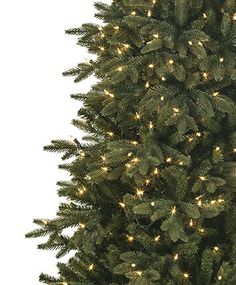 Kennedy Fir Snap Slim Pre Lit Christmas Tree