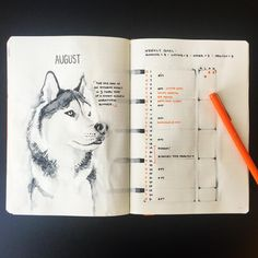 AUGUST // This month's beast mode animal is the majestic sled dog! My only race…