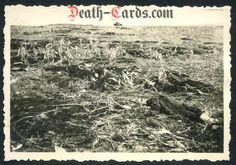 orig. WWII Photo - Battlefield in Russia - KIA Russian soldiers - East Front 1941