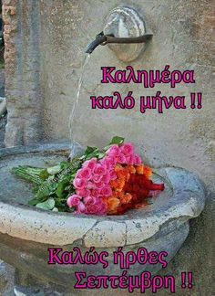 New Month Greetings, Mina, Greek Quotes, Good Morning, Beautiful Pictures, September, Seasons, Plants, Cards