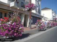 flower box Flower Boxes, Flowers, City, Poland, Garden, Artists, French Chic, Lawn And Garden, Nice Asses