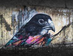 Striking Graffiti Birds by Brazilian Artist L7M | DeMilked