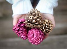 Spray paint pine cones diff. Colors for accents in anyroom! DIY Christmas decorations