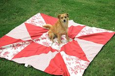 picnic blanket by French General