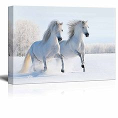 Canvas Prints Wall Art  Two Galloping White Welsh PoniesHorses on Snow Field  Modern Wall Decor Home Decor Stretched Gallery Canvas Wraps Giclee Print  Ready to Hang  24 x 36 *** Click image to review more details.Note:It is affiliate link to Amazon.
