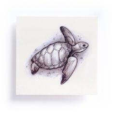 Sea Turtle Tattoos Size : H cm x W cm Color : multi , Black and grey Quantity : Set of 2 ( one of each ) Ingredients : Cosmetic colorant, Seed Oil, Glycine Soja Oil, Water transfer adhesive glue for skin Skin Sa Hawaiianisches Tattoo, Mom Tattoos, Trendy Tattoos, Small Tattoos, Tattoo Wave, Tattoo Quotes, Elephant Tattoos, Animal Tattoos, Turtle Tattoos