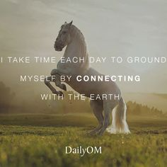 #DailyOM #affirmations #quotes #connection