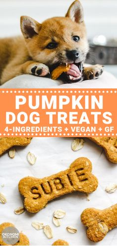 These Vegan Pumpkin Dog Treats are just and super easy to make. Homemade dog treats are inexpensive & much healthier than store bought! Frozen Dog Treats, Diy Dog Treats, Homemade Dog Treats, Dog Treat Recipes, Healthy Dog Treats, Dog Food Recipes, Snack Recipes, Vegan Dog Food, Vegetarian Dog Food Recipe