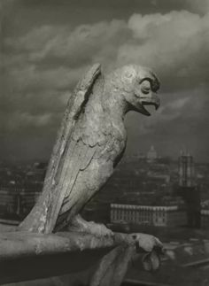 Josef Breitenbach - Paris Photo Grand Palais