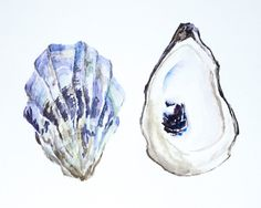 Purple Oyster Shells Original Watercolor by SouthShoreStudioMA
